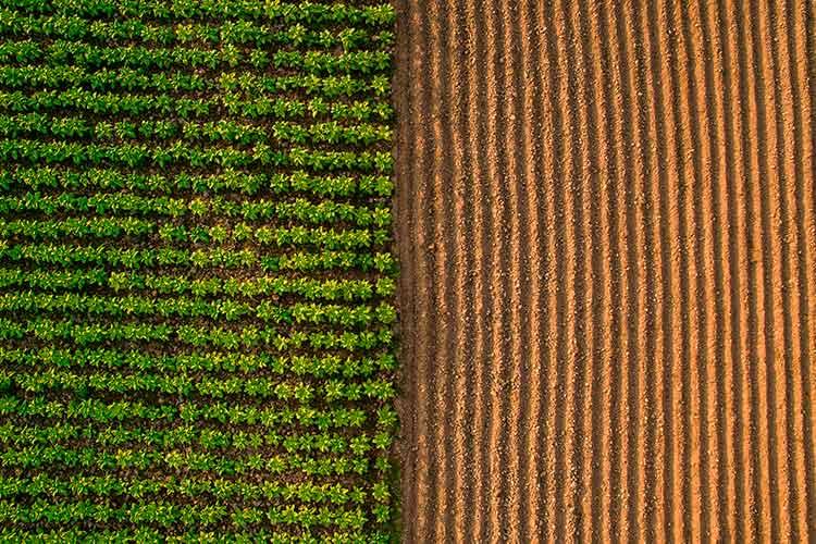 L'observatoire de la performance énergétique de l'industrie agroalimentaire française